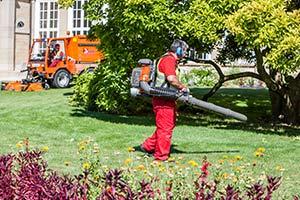 Garten Und Landschaftsbau Stuttgart Muenster Gebäudereinigung